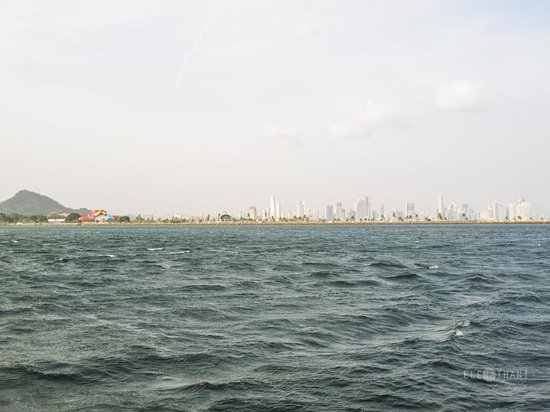 Catamaran Charter Panama - Day Sails: PANAMA CITY SKYLINE