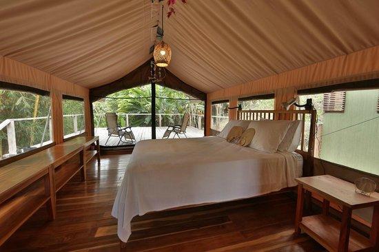Canopy Camp : Tent No. 2