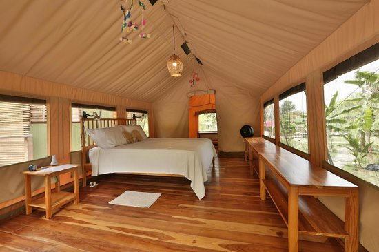 Canopy Camp : Inside of tent No. 2, all wood is teak from Raul's plantation