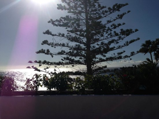Hotel Jardin Tropical: Sendeck