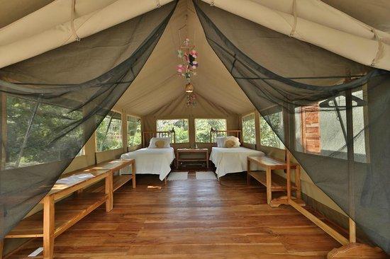 Canopy Camp : Tent No. 5