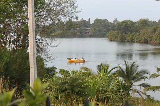 Asian Jewel Boutique Hotel : Lake seen from garden