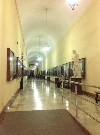 Real Fabrica de Tabacos: Corridor