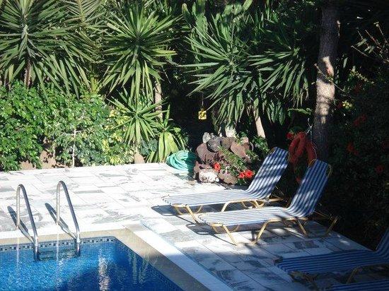 Pension George: pool area