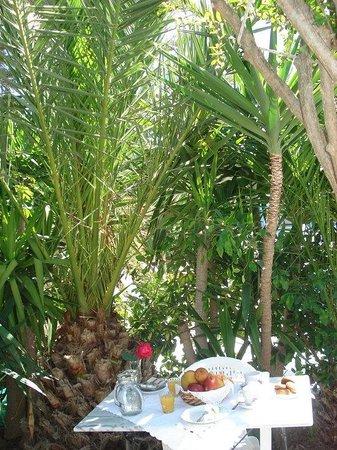Pension George : outdoor breakfast area