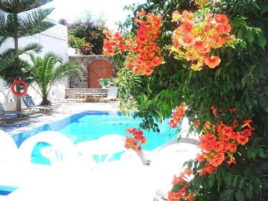 Pension George: Swimming pool