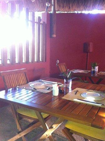 Sous Le Badamier : même les oiseaux vennaient discuter avec moi au petit déjeuner