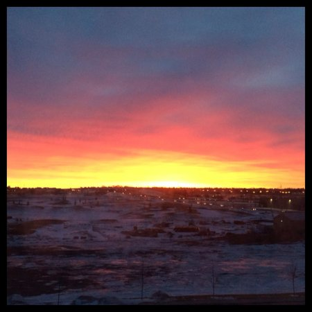 Residence Inn by Marriott Calgary Airport: My magnificent view from my bed when I woke-up!