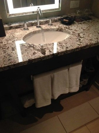 Renaissance Atlanta Midtown Hotel: Bathroom