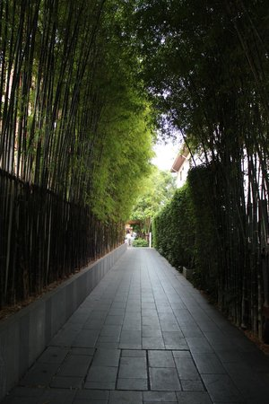 Cape Nidhra Hotel: Bamboo walk way