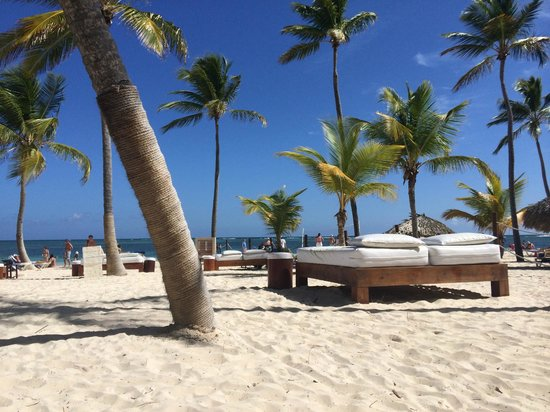 Catalonia Bavaro Beach, Casino & Golf Resort: Privilege beach, including nice beach beds!