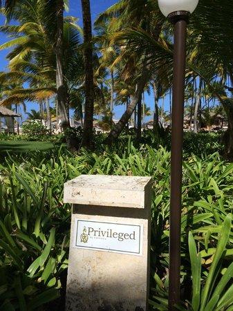 Catalonia Bavaro Beach, Casino & Golf Resort: Privilege entrance