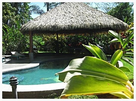 Costa Paraiso: pool