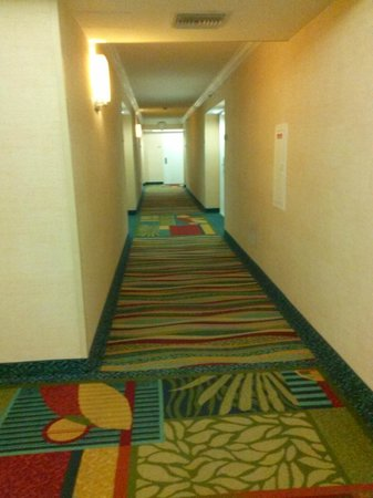 Fort Lauderdale Marriott Harbor Beach Resort & Spa : Hallway