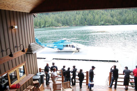 The Lodge at Hippa Island (Westcoast Resorts): Helijet landing for our departure