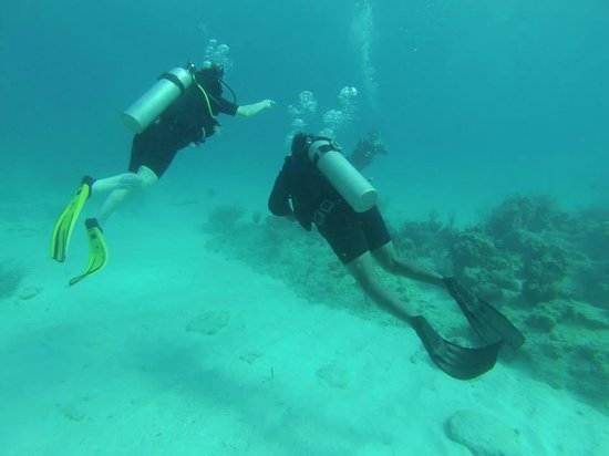 West Bay Divers: recommended