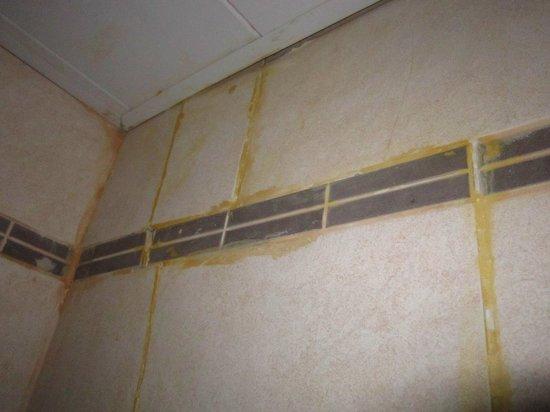 Hotel Century Plaza: Broken tile in shower
