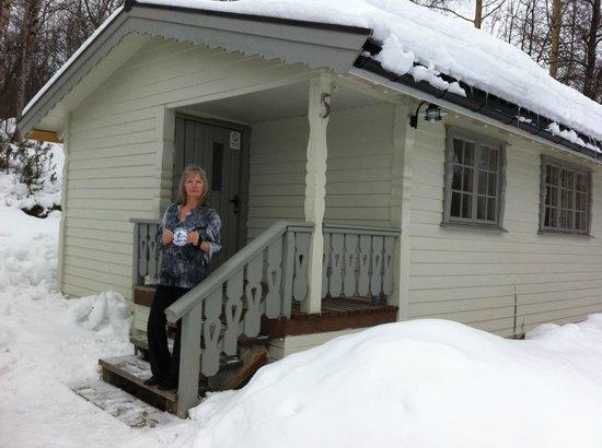 Sollia Gjestegard: Cabin in the woods