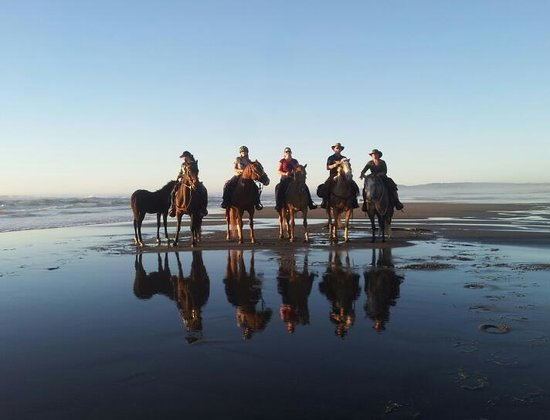 Bullards Beach State Campground: Bullards beach ride with friends
