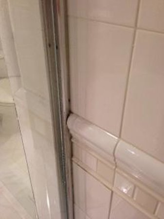 Beach House Hotel Hermosa Beach: Mold in shower