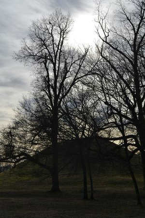 Toltec Mounds Archaeological State Park: One of the mounds by the light of the winter sun
