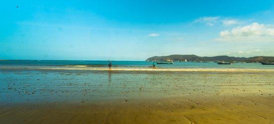 Punta Piedrero Ecolodge : Playa Junto al Hotel
