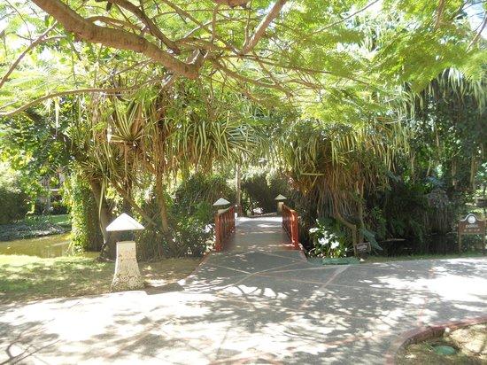 Natura Park Beach - EcoResort & Spa: Site extérieur
