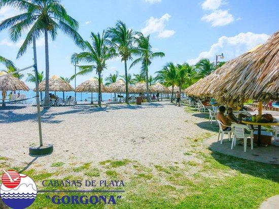 Cabanas de Playa Gorgona: Bohios
