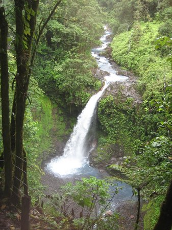 Blue River Resort & Hot Springs: Lovely waterfalls are all around!
