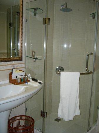 Excelsior Grand Hotel: Nice shower