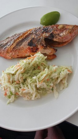 Sky's the Limit: Red snapper and coleslaw