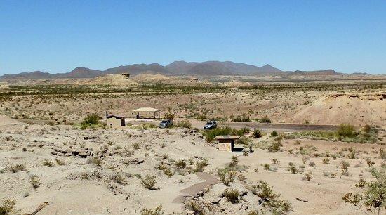 Chihuahuan Desert: Desert @  Dinosaur Fossil Exhibit