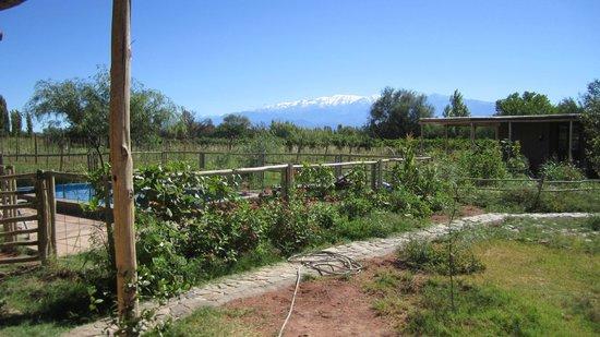 Chakana Hospedaje Rural: Vista desde la habitación