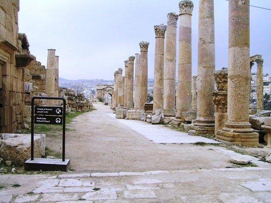 Ruinas de Jerash: COLONNE