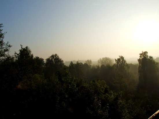 Bed & Breakfast 't Bronnenbos: view