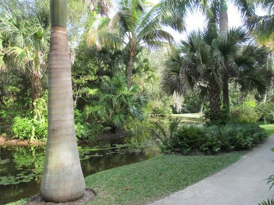 Royal Palms - Picture of McKee Botanical Garden, Vero Beach ...