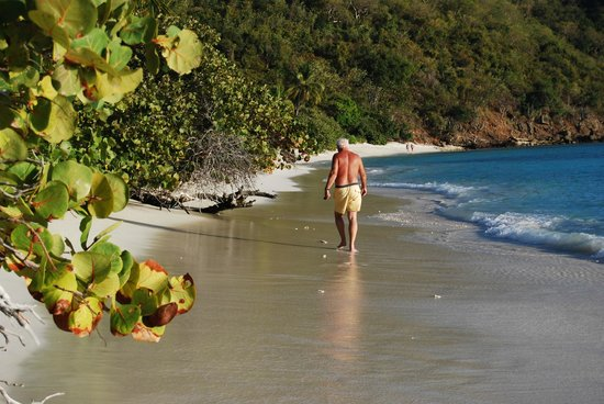 Guana Island: alone on the beach