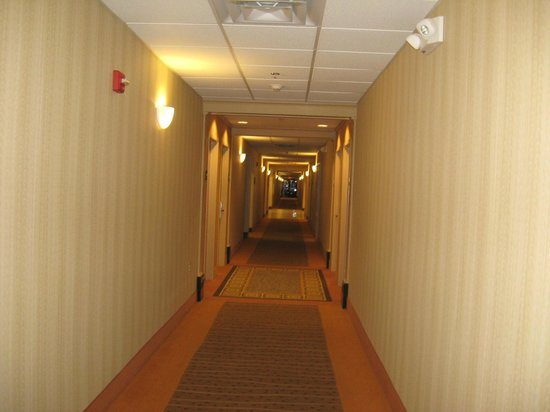 Hampton Inn and Suites Knoxville North: Hallway from outside room
