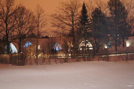 Hotel de Glace: Ice Hotel....beautiful