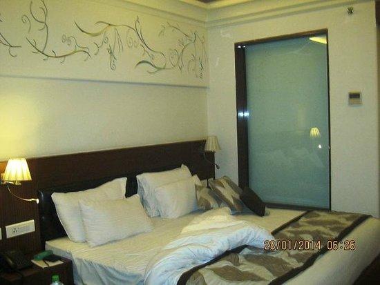 Hotel Regent Grand: Room