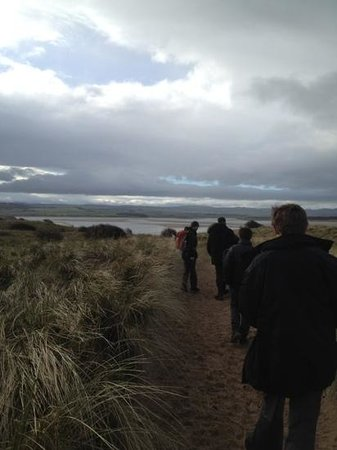 Footsteps - Walking the beauty of Northumberland: Heading to Budle Bay