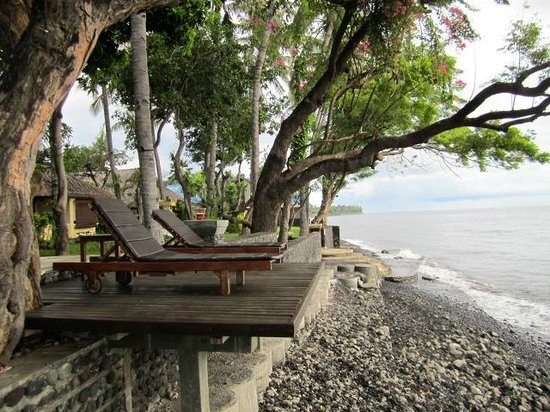 Mimpi Resort Tulamben: Great spot to chill and read and watch world go by