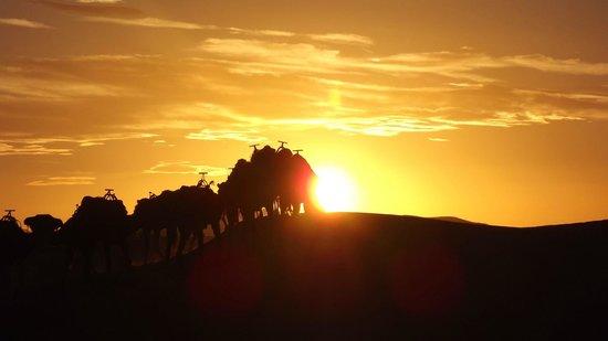 Desert Dream 4x4 Tours: Atardecer en el desierto.