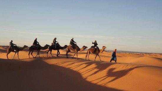 Desert Dream 4x4 Tours: Paseo en dromedario con Zair.