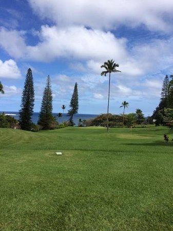 Travaasa Hana, Maui: putt and pitch course at Travaasa. No charge!