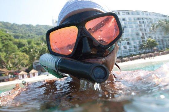 Hyatt Ziva Puerto Vallarta: Snorkeling