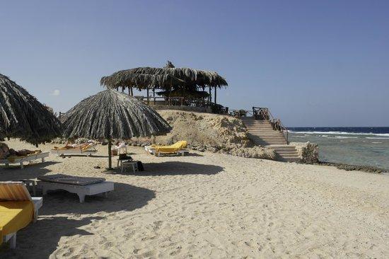 Zabargad Berenice Resort: bar della spiaggia
