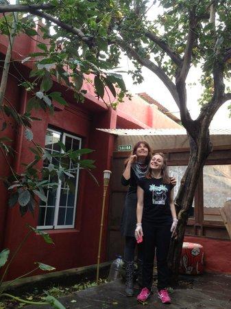 B&B La Laguna: Chiara und ich unterm Zitronenbaum im Patio