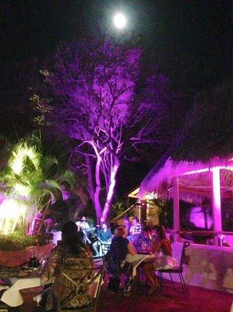 Pelican Eyes Resort & Spa: Valentines Moonlight Dinner