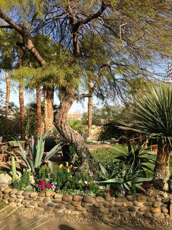 Hacienda Hot Springs Inn: The Oasis